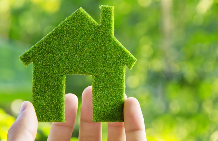 3 of the Best Eco-Friendly Home Improvement Ideas