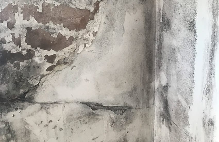 How to Stop Damp Coming Through Your Walls