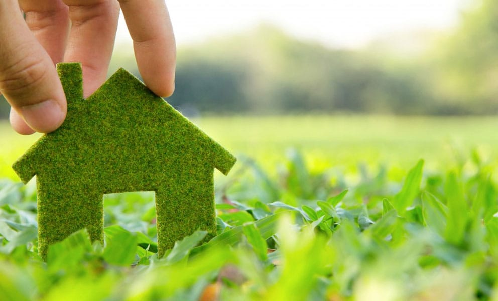 5 Eco-Friendly Home Improvements for 2021